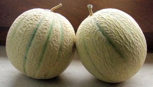 2010-melons