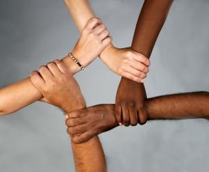 diversity (1)
